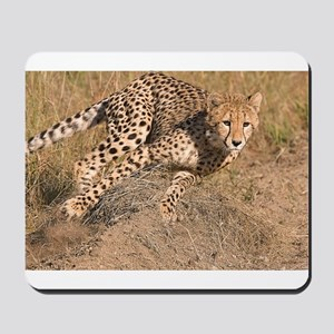 Cheetah On The Move Mousepad