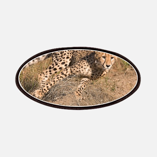 Cheetah On The Move Patches