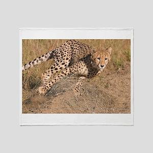 Cheetah On The Move Throw Blanket
