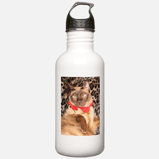 FPG Xmas Cat I Sports Water Bottle
