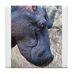Hippo Profile Tile Coaster