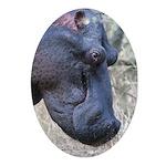 Hippo Profile Ornament (Oval)