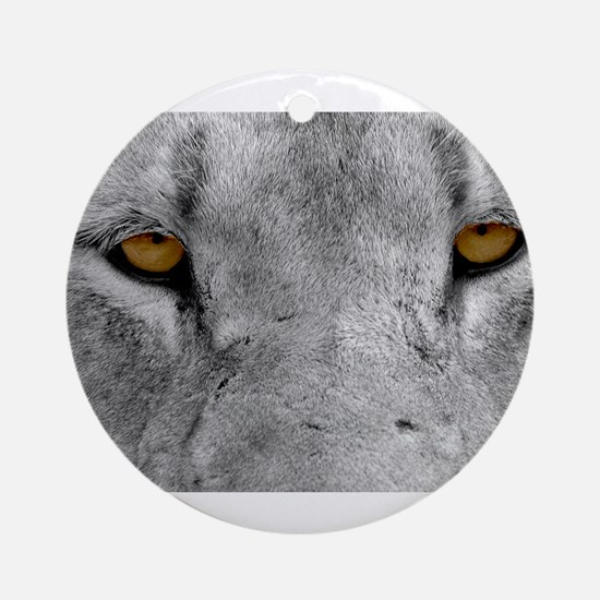 Lion Eyes Ornament (Round)