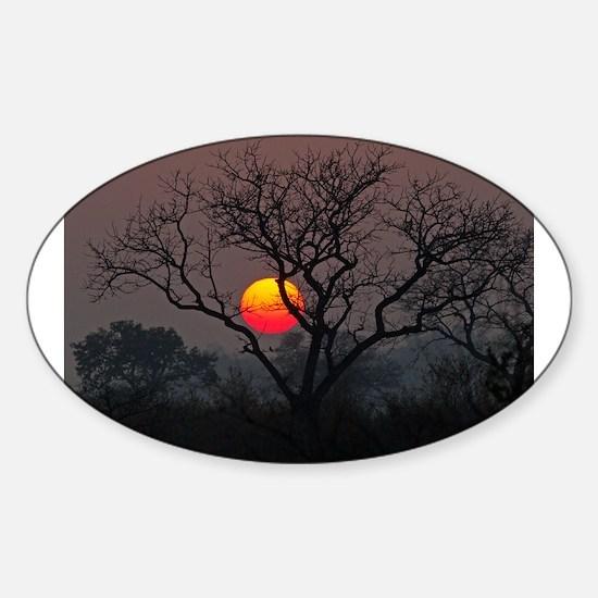 Londolozi Sunset Sticker (Oval)