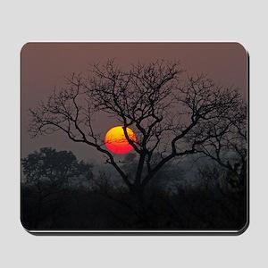 Londolozi Sunset Mousepad