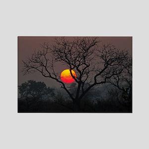 Londolozi Sunset Rectangle Magnet