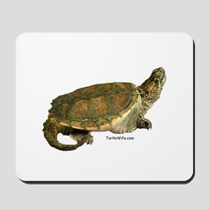 Snazzy Snapper Mousepad