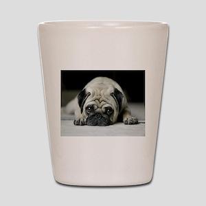 Sad Pug Shot Glass