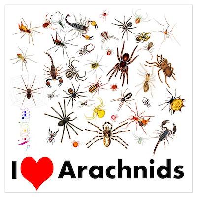 I Love Arachnids Poster