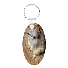 Cute Faces - Meerkats Keychains
