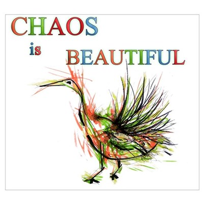 chaos is beautiful_ Poster