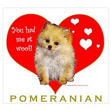 Pomeranian Valentine Poster