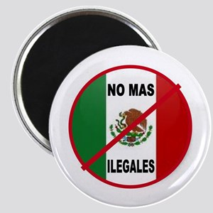 DEPORT ILLEGAL ALIENS Magnet