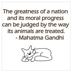 Gandhi Quote with Cat Framed Print