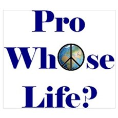 Pro Whose Life? Poster