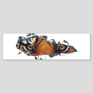 Tiger Eyes Sticker (Bumper)