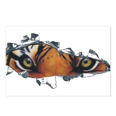 Tiger Eyes Postcards (Package of 8)