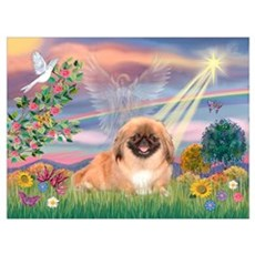 Cloud Angel Pekingese (#1) Canvas Art