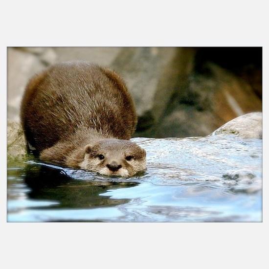 River Otter (gone Fishin') Wall Art