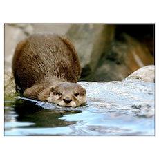 River Otter (gone Fishin') Wall Art Poster