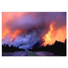 Wildland Fire Storm Canvas Art