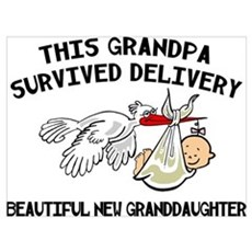 New Granddaughter Poster