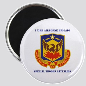 DUI - 173rd Special Troops Battalion with Text Mag