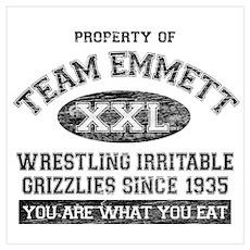 Property of Team Emmett Poster