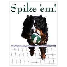 Spike 'em! Poster