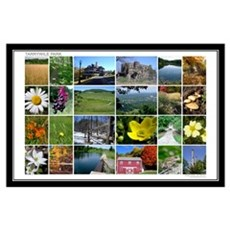 Tarrywile Park Photo Collage Poster