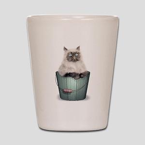 Himalayan Kitten Shot Glass