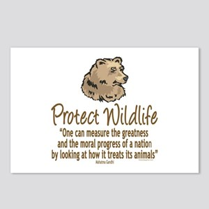 Protect Bears Postcards (Package of 8)