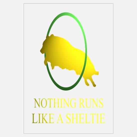 Running Sheltie