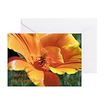 Golden Poppy Greeting Cards (Pk of 10)