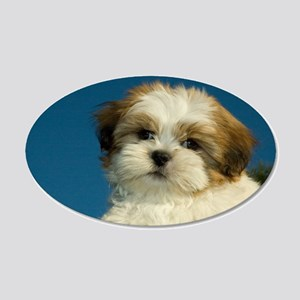 Shih Tzu puppy 22x14 Oval Wall Peel