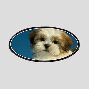 Shih Tzu puppy Patches