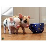 Pig Wall Decals