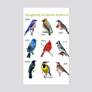 Songbirds of North America Sticker (Rectangle)