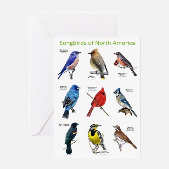 Songbirds of North America Greeting Card