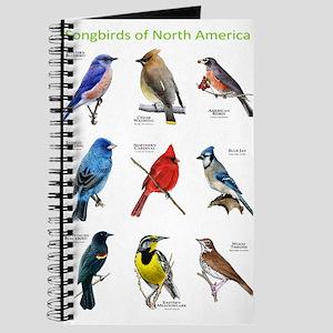 Songbirds of North America Journal