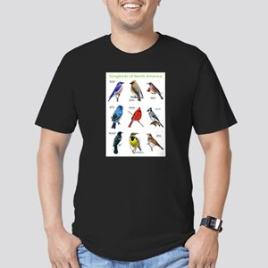 Songbirds of North America Men's Fitted T-Shirt (d