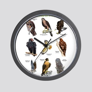 Northern American Birds of Prey Wall Clock