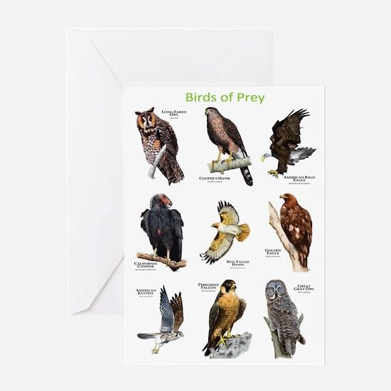Northern American Birds of Prey Greeting Card