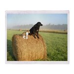 Cat and Dog on Hay Bale Throw Blanket