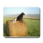 Cat and Dog on Hay Bale Mousepad