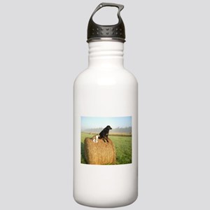 Cat and Dog on Hay Bale Stainless Water Bottle 1.0