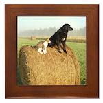 Cat and Dog on Hay Bale Framed Tile