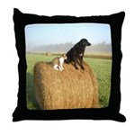 Cat and Dog on Hay Bale Throw Pillow
