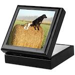Cat and Dog on Hay Bale Keepsake Box
