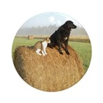 Cat and Dog on Hay Bale Ornament (Round)